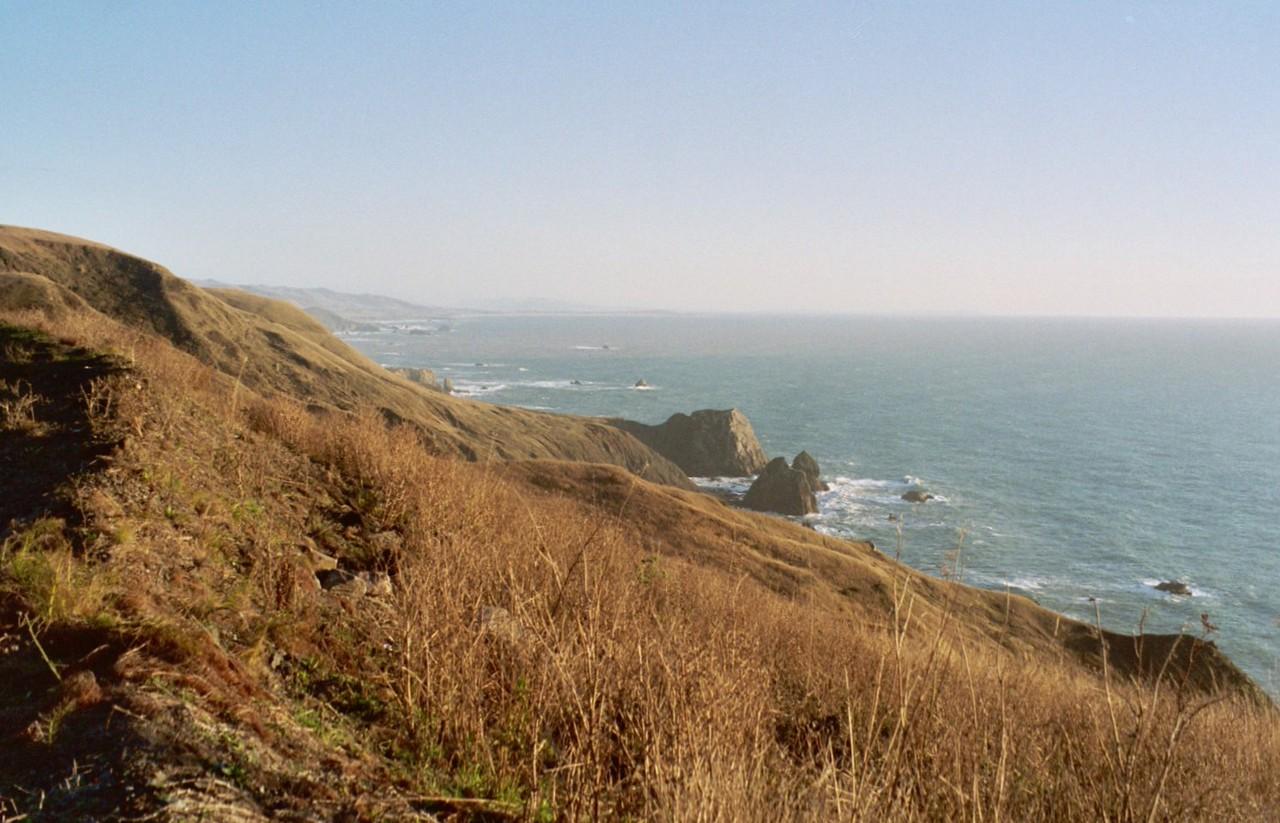 Jenner Coastline