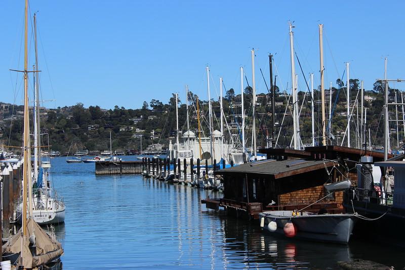 Pelican Harbor