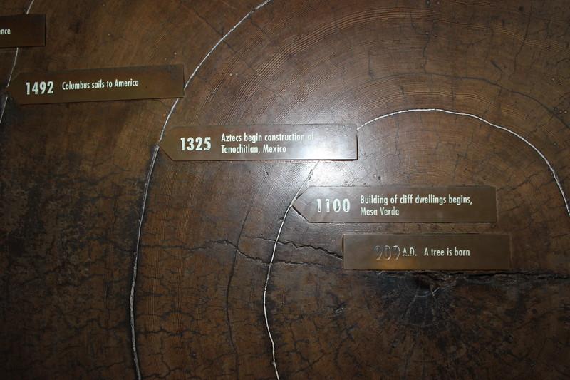 Redwood Timeline
