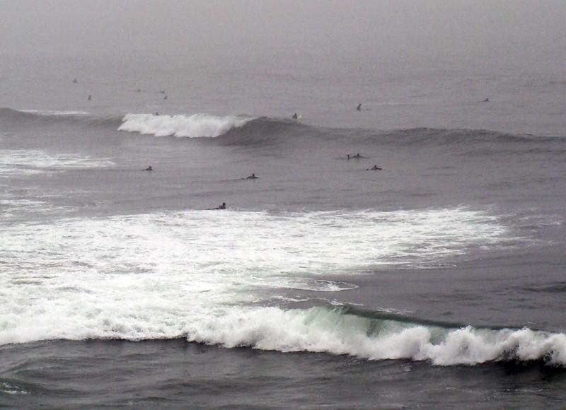 Pacific Ocean Surfers