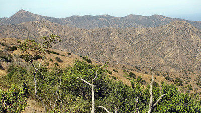 Catalina Island - Avalon and Skyline Drive
