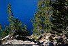 Tioga Pass, Yosemite, CA