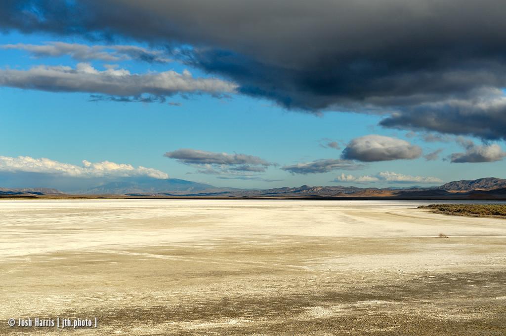 Soda Lake, Carrizo Plain National Monument, June 2012.