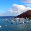 Catalina Island:  Southeast view on Avalon Harbor