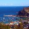 Catalina Island: Avalon Casino, Southeast View Over Harbor