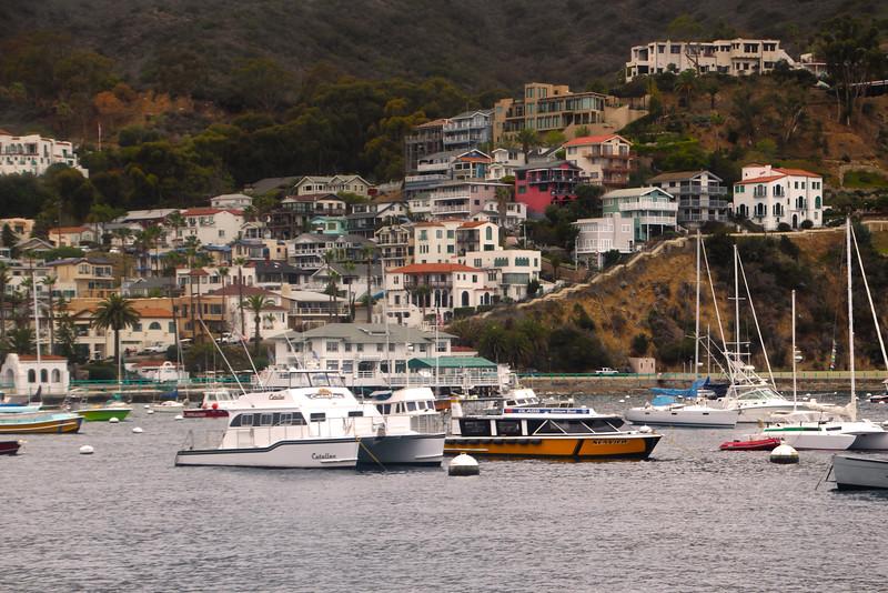 Catalina Island:  Avalon Harbor