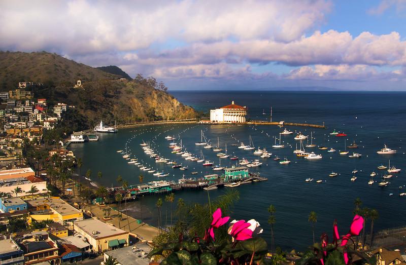 Catalina Island:  Winter View Over Avalon Harbor