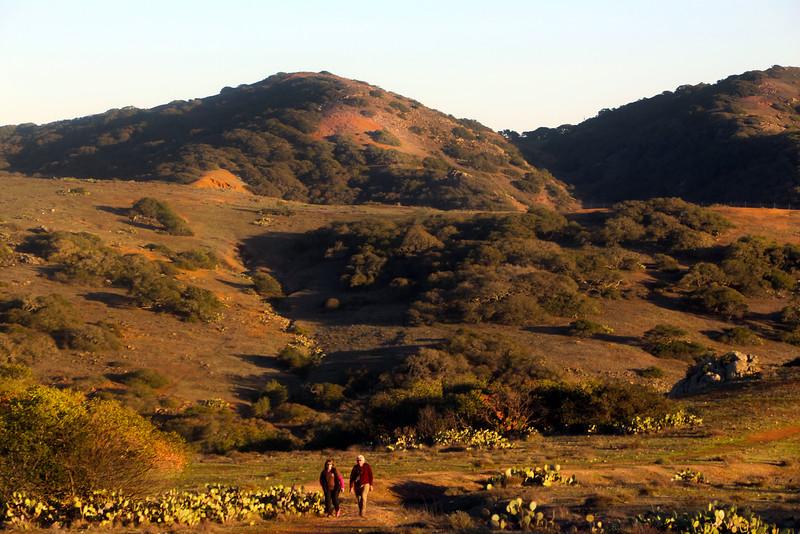 Catalina Island:  Catalina Backcountry Hike