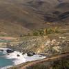 Catalina Island:  Palm Oasis, Little Harbor