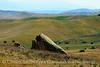 Carrizo Plain Nat Mon, CA (1)