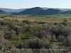 Carrizo Plain NM, CA (2)