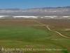 Caliente Canyon Rd, Carrizo Plain NM, CA (5)