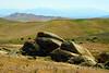 Carrizo Plain Nat Mon, CA (5)
