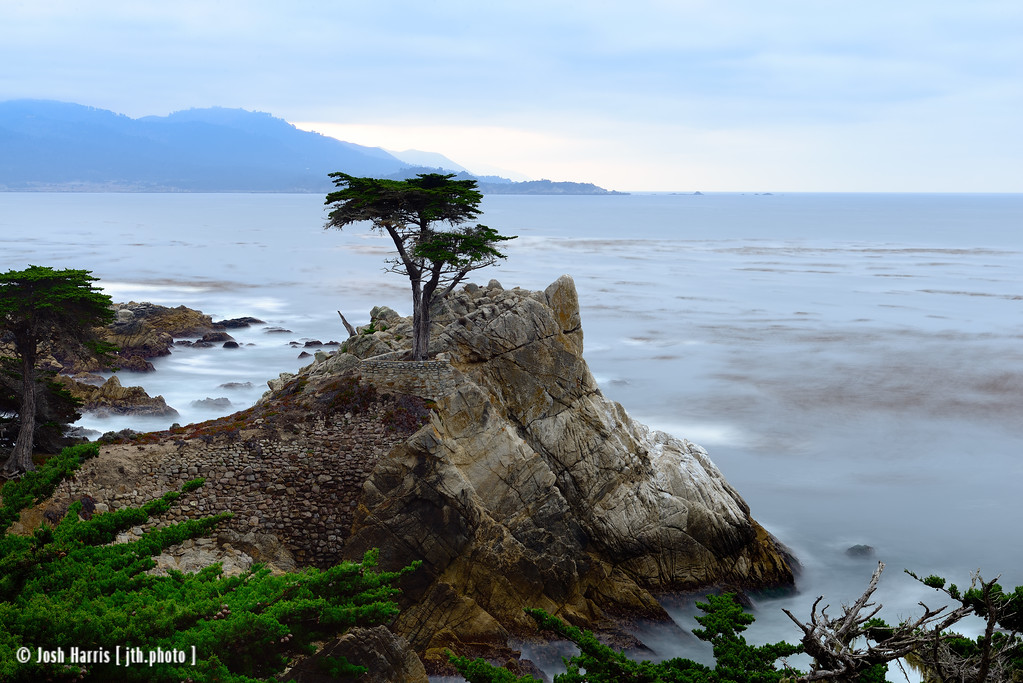 17 Mile Drive, Carmel, California. September 2014.
