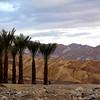 Death Valley National Park, Winter Scenes