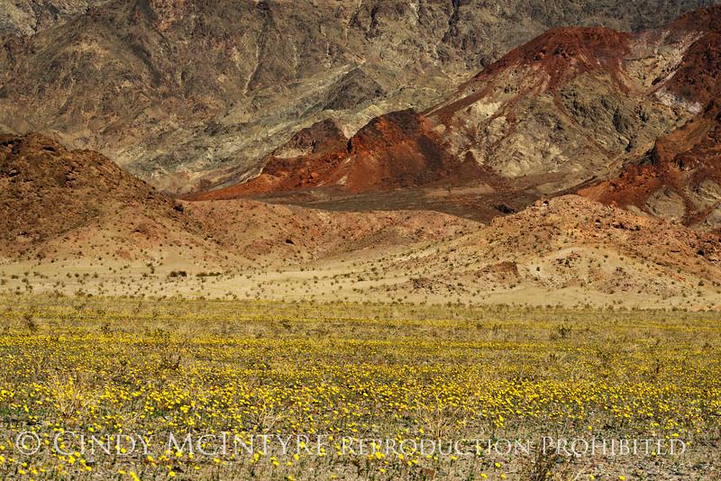Death Valley, Jubilee Pass (6)