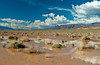 Flash flood waters in the desert landscape of Death Valley National Park, California, USA.