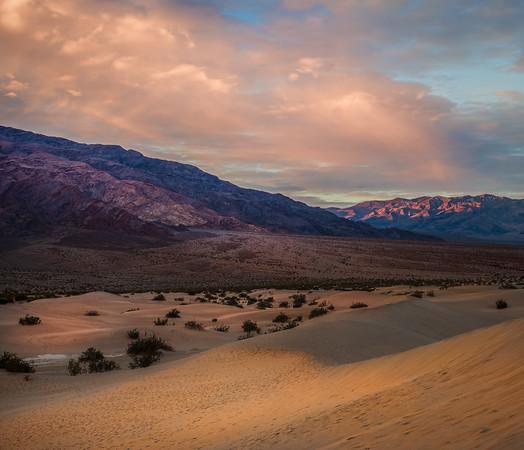 Rosy Fingers-Mesquite San Dunes