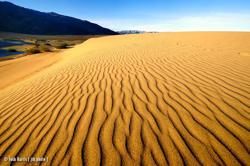 Mesquite Dunes, Death Valley, February 2016.