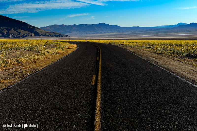 Death Valley, February 2016.