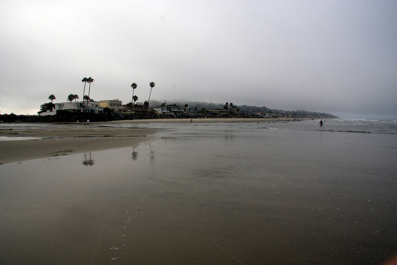 2009: Del Mar Dog Beach looking south