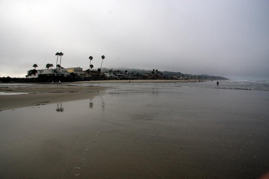 2009: Del Mar Dog Beach looking south