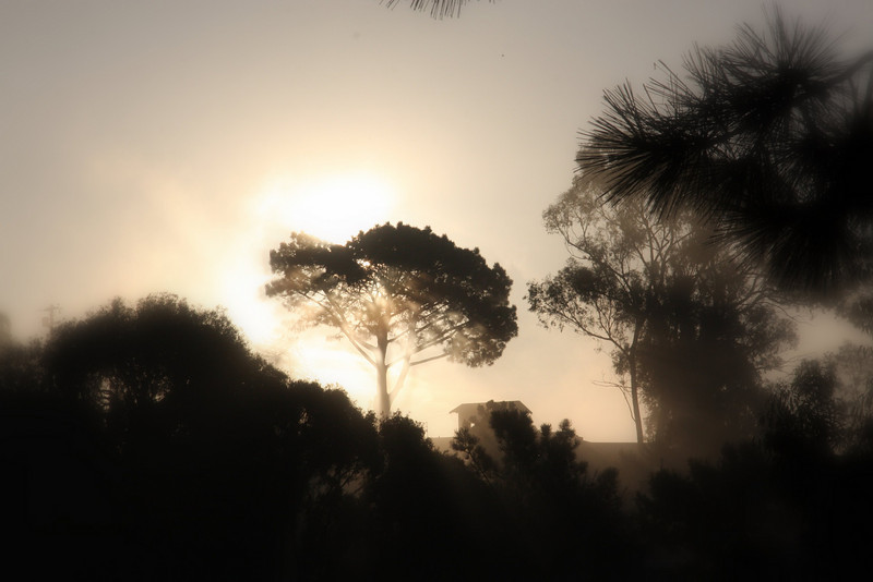 Del Mar sunrise