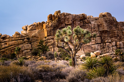 Hidden Valley, Joshua Tree NP