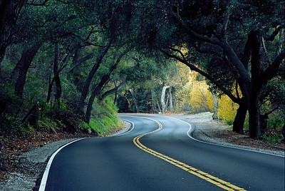 Creek road