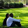 Chandon Winery California, wine tasting on lawn