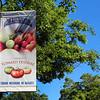 Suisun Vallley, Fairfield Tomato Festival