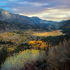 Autumn View - Sonora Pass