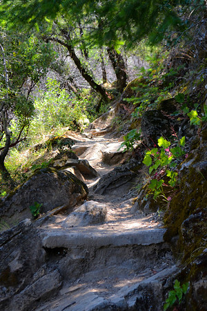 At the falls, this trail reminded me of fairyland.   It's the trail that goes to the very top of the falls - no railing.    There is only a short distance where there is a steep drop off, right where the sunlight is on the left.....  but I just couldn't bring myself to walk past it.  This is my favorite.