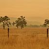 Wildfire smoke, Jolon CA