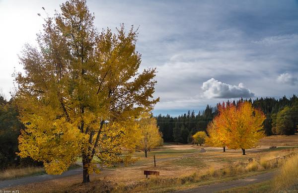 Mace Meadows in November