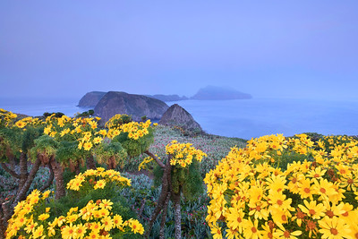 Channel Islands National Park - Inspiration Point, Anacapa Island