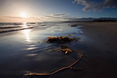 Goleta - Kelp along the surf at Coal Oil Point