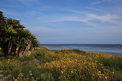 Goleta - Coastal bluffs near Coal Oil Point