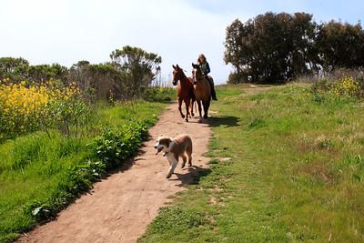 Goleta - Santa Barbara Shores County Park/Ellwood Mesa