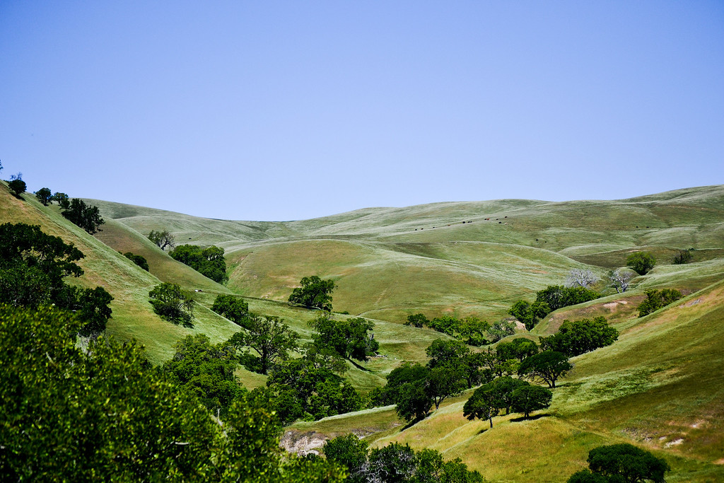 Corral Hollow Road, Livermore, CA.