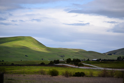 74-Livermore CA Spring near Poppy Ridge
