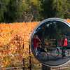 Wine Country Bike Tour, Reflections