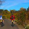 Wine Country Bikes Tour