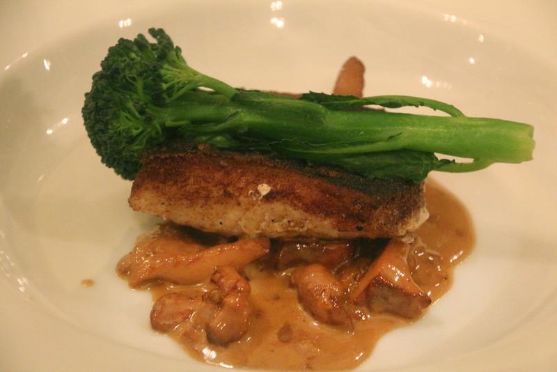 Healdsburg California, Mateo's Cocina Latina, local rock cod with black bean puree