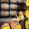 Alexander Valley Vineyards, Red Wine Tasting in Caves