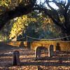 Alexander Valley Vineyards, Alexander Family Graves.jpg