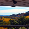 Sbragia Family Vineyards, View on Valley from Terrace