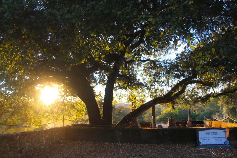 Alexander Valley Vineyards, Alexander Family Graveyard