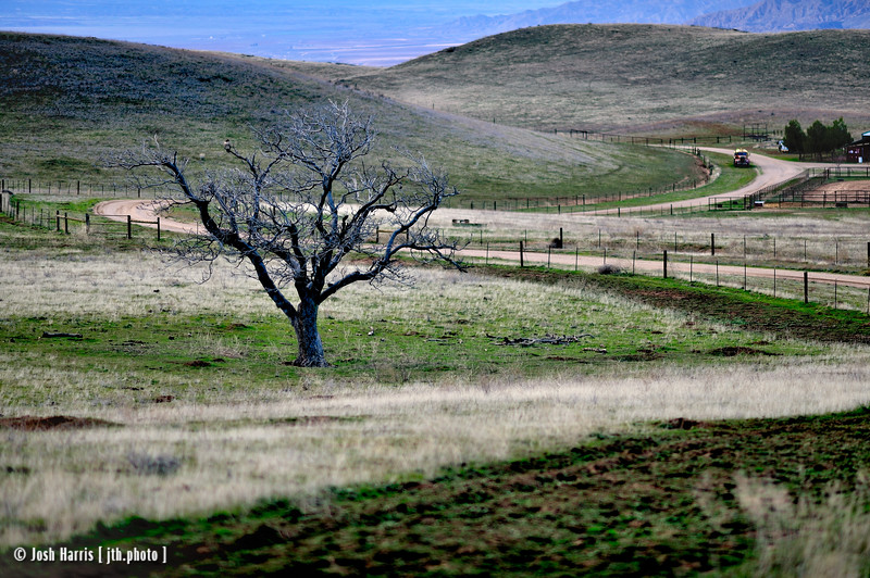 Cerro Noroeste Road, Maricopa, December 2010.