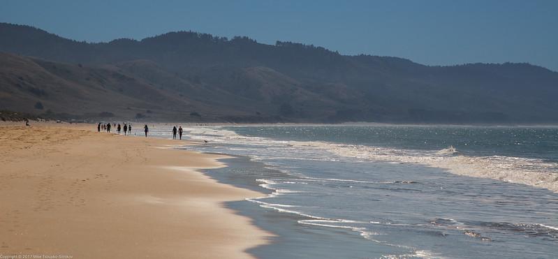 Limantour Beach at Drakes Bay